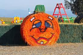 Pumpkin Patch Medford Oregon 2015 by 7 Awesome Corn Mazes In Oregon You Have To Do This Fall