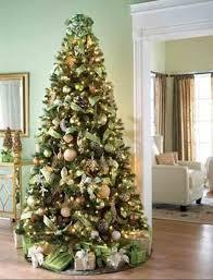 Plantable Christmas Trees Columbus Ohio by 108 Best Christmas Tree Images On Pinterest Christmas Tree