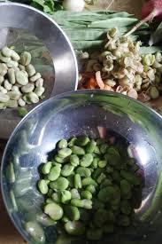 comment cuisiner les f es fraiches comment préparer les fèves fraiches pas à pas en photo