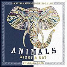 Amazon Animals Night Day Coloring Book Amazing To Bring Life 9781438008974 Patricia Moffett Books