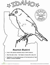 Bird Coloring Pages Printables