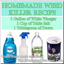 Here Is A Homemade Recipe For An Amazing Weed Killer Spray That You Can Use To