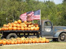Gainesville Pumpkin Patch by 10 Pumpkin Patches To Visit In Georgia This Fall Tripstodiscover Com