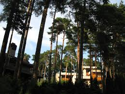 100 Residences At Forest Park Meaparks Park Riga This Week