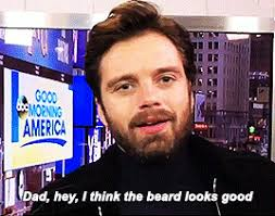 Sebastian Stan Leaves A Message For His Dad Mark Hamill