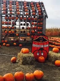 Bengtson Pumpkin Farm Lockport by Where To Go Apple U0026 Pumpkin Picking Around Chicago