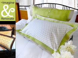 Re imagine & Renovate Double Flange Pillow Shams in Spring