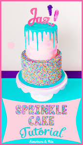 Sprinkle Cake Tutorial Sweetness & Bite