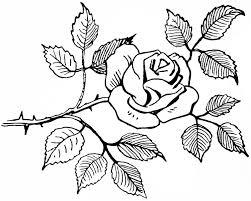 knumathise Rose Clip Art Black And White
