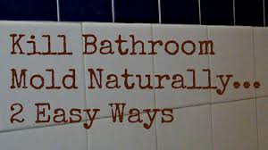 bathroom mold and mildew solutions bathroom trends 2017 2018