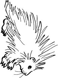 Porcupine Coloring Pages