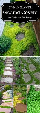 Best 25+ Backyard Walkway Ideas On Pinterest | Side Walkway, Back ... Great 22 Garden Pathway Ideas On Creative Gravel 30 Walkway For Your Designs Hative 50 Beautiful Path And Walkways Heasterncom Backyards Backyard Arbors Outdoor Pergola Nz Clever Diy Glamorous Pictures Pics Design Tikspor Articles With Ceramic Tile Kitchen Tag 25 Fabulous Wood Ladder Stone Some Natural Stones Trails Garden Ideas Pebble Couple Builds Impressive Using Free Scraps Of Granite 40 Brilliant For Stone Pathways In Your