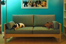 pet resistant cat or dog friendly furniture sofas and chairs