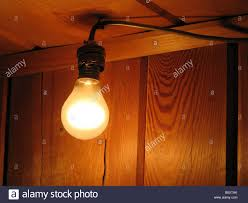 simple light bulb in socket in front of a wooden wall in a wooden