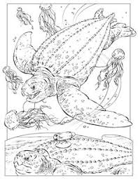 National Geographic Coloring Book Pages J Z