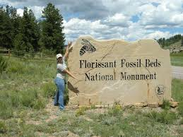 what was the paleoclimate of florissant fossil beds national