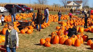 Bengtson Pumpkin Farm Chicago by Fun Things To Do With Kids In Chicago In October