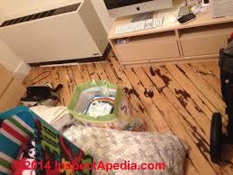 Wood Floor Cupping In Winter by Wood Floor Types Damage Diagnosis U0026 Repair Damaged Wood Floors
