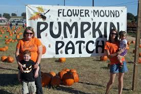 Flower Mound Pumpkin Patch Christmas Tree by Farris October 2010
