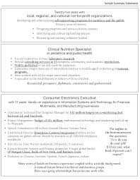 Summary On A Resume Examples Best Job