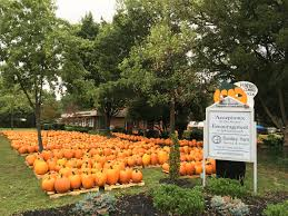 Pumpkin Patches Maryland by Better Together Uua Org