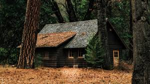 100 House In Forest Small In The Youtube Channel Cover ID 65418