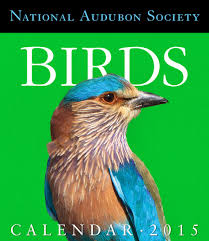 Amazon.com: Audubon Birds Gallery Calendar 2015 (Workman Gallery ... Kara Krahulik On Twitter Saw This Calendar At Barnes And Noble Jiffpom Calendar Now Facebook Bookfair Springfield Museums Briggs Middle School Home Of The Tigers Fairbanks Future Problem Solvers Book Fair Harry 2017 Desk Diary Literary Datebook 9781435162594 Gorilla Bookstore Bogo 50 Red Shirt Brand Pittsburg State Tips For Setting Up Author Readings Signings St Ursula Something Beautiful A5 Planner Random Fun Stuff Dilbert 52016 16month Pad Scott Adams Color Your Year Wall Workman Publishing
