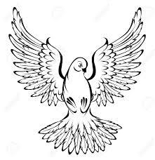 Arts of painted flying dove outline on a white background Stock Vector