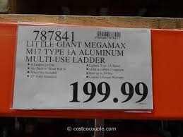 Aerobed King With Headboard by Little Giant Megamax M17 Type 1a Aluminum Ladder