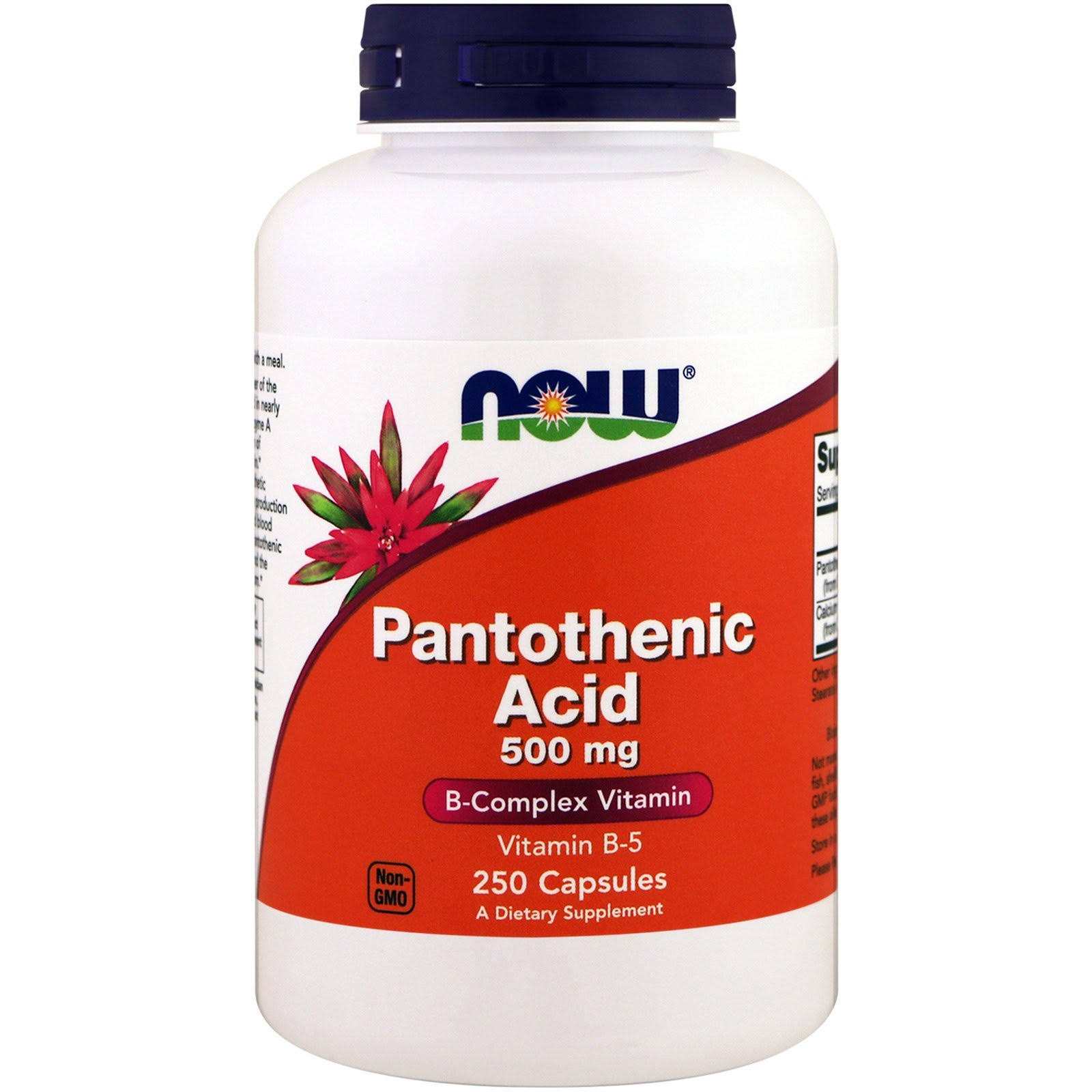 Now Foods Pantothenic Acid Supplement - 250ct, 500mg