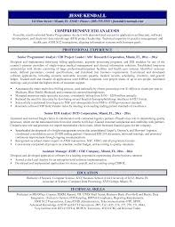 Business Analyst Resume Summary