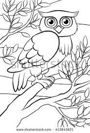 Coloring Pages Birds Cute Owl Sits On The Tree