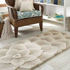 New Arrival of Rugs from Pier e