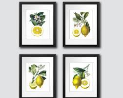 Kitchen Decor Lemons Print Art Fruit Citrus Wall