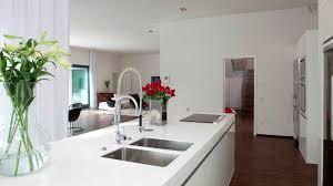 Briliant Idea White Kitchen Cabinets Red Roses Vase