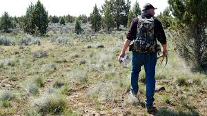 Does Deer Shed Their Antlers by Chasing Elk To Death For Their Antlers Kuow News And Information