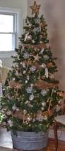 Longest Lasting Christmas Tree by How To Keep A Christmas Tree Fresh Christmas Tree Water And
