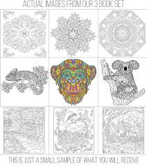 Limited Time Offer All THREE Of Our Adult Coloring Book Sets 9