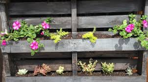 Transforming An Old Wood Pallet Into A Rustic Flower Garden