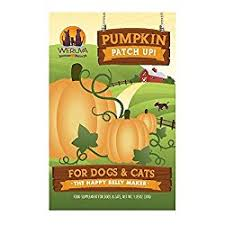 Organic Pumpkin For Dogs Diarrhea by Pumpkin Dog Treats U2013 One Of The Ultimate Dog Superfoods
