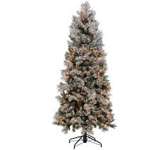 Snow Flocked Slim Christmas Tree by Kringle Express Flocked 6 5 U0027 Winter Slim Christmas Tree Page 1