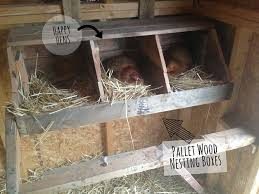 Cute DIY Pallet Wood Nesting Boxes For The Chicken Coop! | Crazy ... Converting A Barn Stall Into Chicken Coop Shallow Creek Farm In 57 With About Our Company Kt Custom Barns Llc Question Welcome To The Homesteading Today Forum And Community Shabby Olde Potting Shed Makeover Progress Horse To Easy Maintenance Good Ideas For Any Chicken Coop Youtube The Chick Litter Sand Superstar Built House In An Empty Horse Stall Barn Shedrow Row Horizon Structures