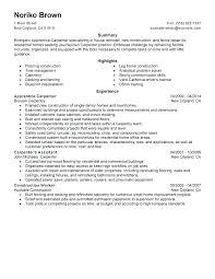 Construction Worker Resume Cover Letter For Example Apprentice Carpenter Sample