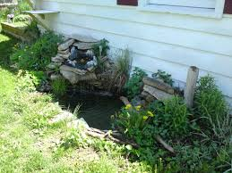 Robert Brumm's Blog - Robert Brumm Pond Makeover Feathers In The Woods Beautiful Backyard Landscape Ideas Completed With Small And Ponds Gone Wrong Episode 2 Part Youtube Diy Garden Interior Design Very Small Outside Water Features And Ponds For Fish Ese Zen Gardens Home 2017 Koi Duck House Exterior And Interior How To Make A Use Duck Pond Fodder Ftilizer Ducks Geese Build Nodig Under 70 Hawk Hill Waterfalls Call Free Estimate Of Duckingham Palace Is Hitable In Disarray Top Fish A Big Care