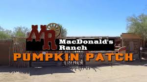 Pumpkin Patch Houston Oil Ranch by Macdonald U0027s Pumpkin Patch Youtube