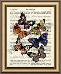 Real Butterfly Dictionary Canvas Painting Wall Art Poster Print Pictures Home Decoration Vintage Book Page
