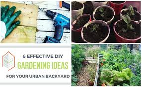 DIY Gardening Ideas For Your Urban Backyard: 6 Effective Tips Urban Backyard Design Ideas Back Yard On A Budget Tikspor Backyards Winsome Fniture Small But Beautiful Oasis Youtube Triyaecom Tiny Various Design Urban Backyard Landscape Bathroom 72018 Home Decor Chicken Coops In Coop Wasatch Community Gardens Salt Lake City Utah 2018 Bright Modern With Fire Pit Area 4 Yards Big Designs Diy Home Landscape Fleagorcom Our Half Way Through Urnbackyard Mini Farm Goats Chickens My Patio Garden Tour Blog Hop