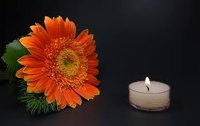photo gratuite romantique bougie fleur deuil image gratuite
