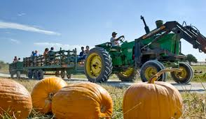 Omaha Area Pumpkin Patch by 25 Things To Do In Omaha Under 25 Ohmy Omaha