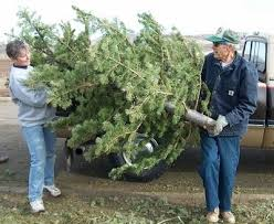 Christmas Tree Pickup Baltimore County by Dfw Cities Offering Christmas Tree Recycling Greensource Dfw
